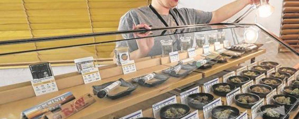 América Latina, referente en legalización de marihuana