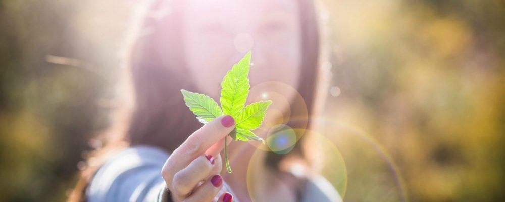 Decrece el papel de la mujer en la industria del cannabis