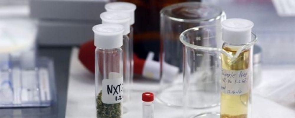 Latinoamérica avanza en el uso de cannabis medicinal