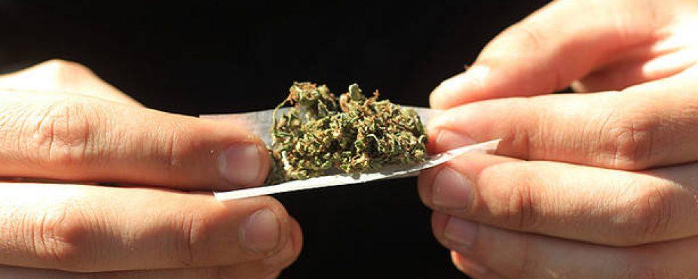 Fumadores de cannabis ante notario