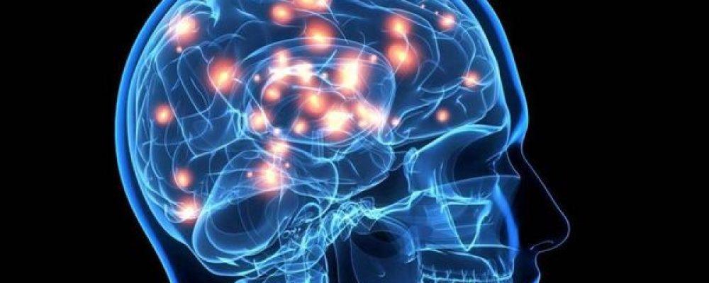 Cómo y por qué el cannabis podría rejuvenecer el cerebro