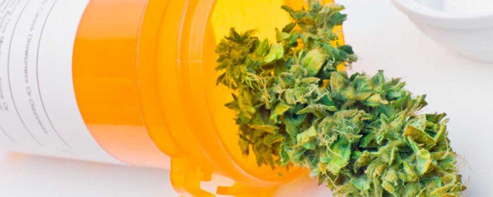Usos terapéuticos del cannabis (I)