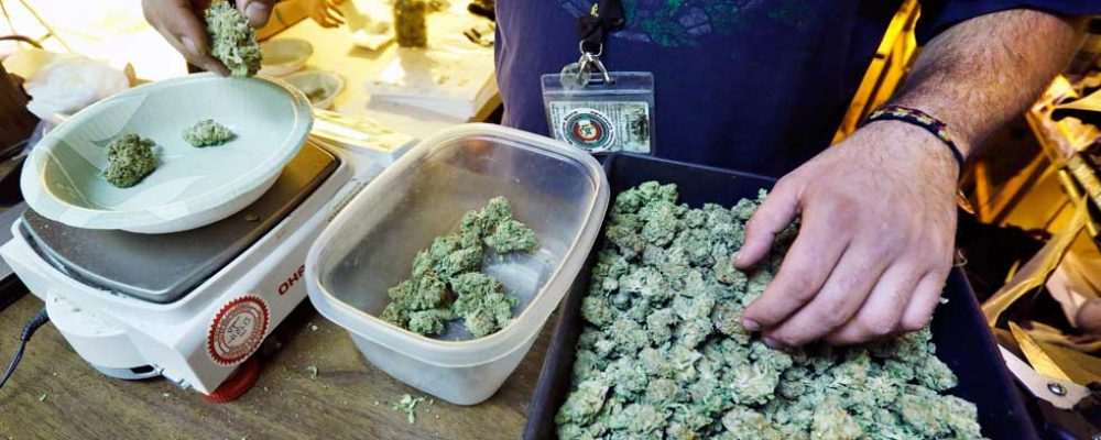 Colas y más colas para comprar marihuana legal en California
