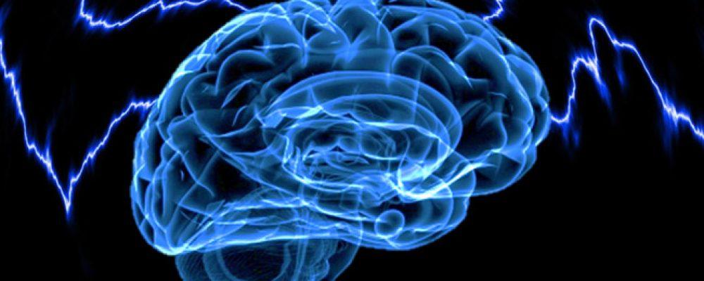 Una combinación de palmitoiletanolamida y luteolina mejoró los síntomas del autismo en un niño