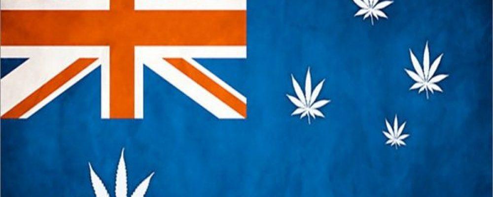 Cannabis terapéutico en el continente australiano: Oceanía se abre paso hacía la legalización