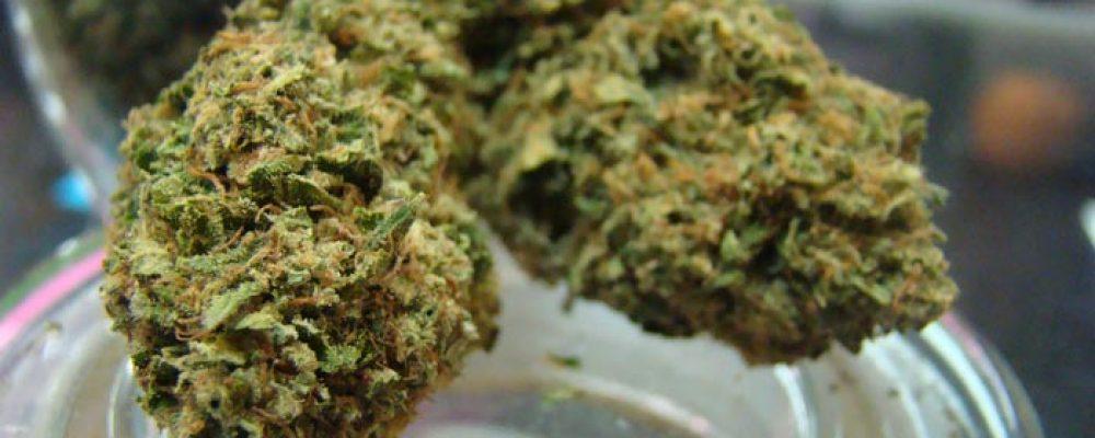 Venta de cannabis recreativo en Canadá generaría $4.500 millones