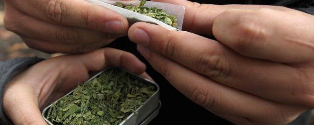 Hacienda ingresaría 1.200 millones si se regula la marihuana en España