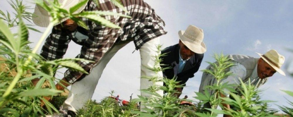 La crisis del Rif revela el fracaso del desarrollo en Marruecos