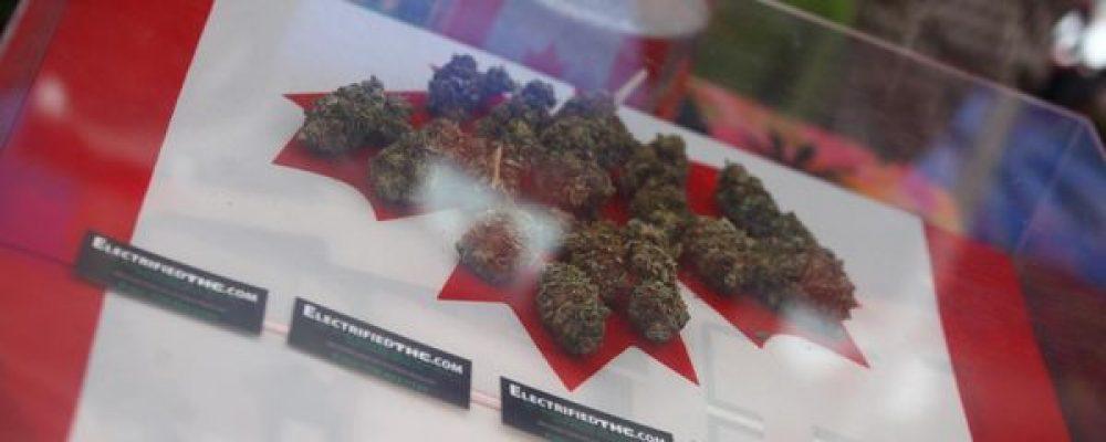 De la amplia aceptación a un uso restringido: comparativa de los programas de cannabis terapéutico en el mundo