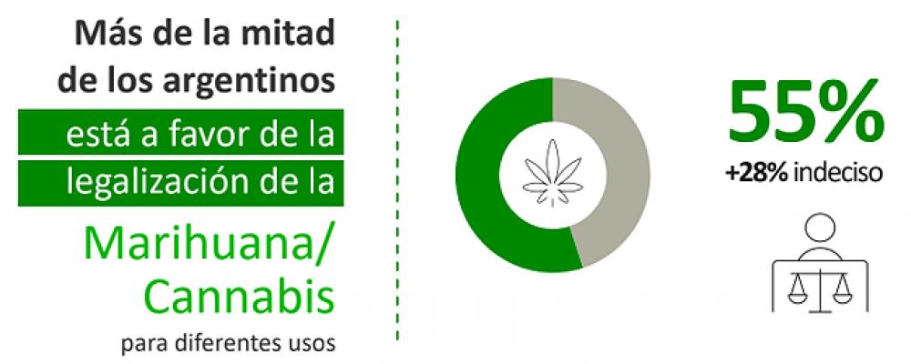 Un 55% de los argentinos está de acuerdo la legalización del cannabis