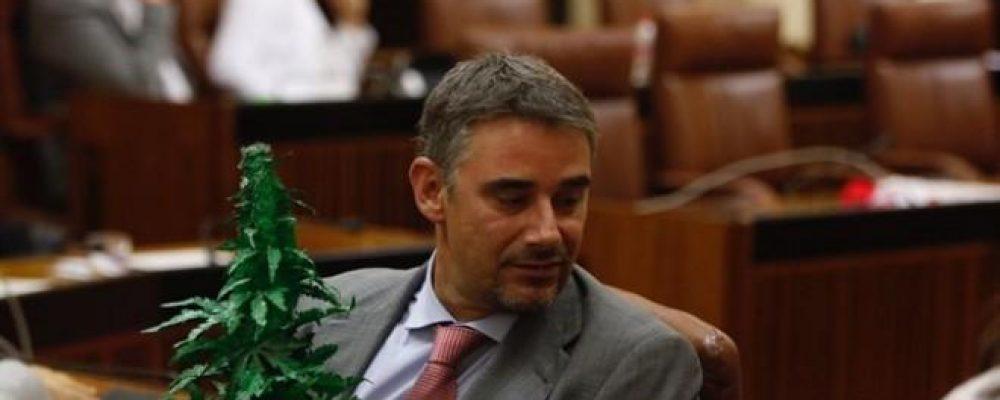 El Parlamento andaluz rechaza pedir la regulación del cannabis para el ocio